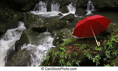 Red umbrella next to waterfall in rainforest, El Yunque...