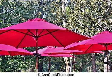 Red umbrellas