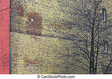 Red wall with windows and