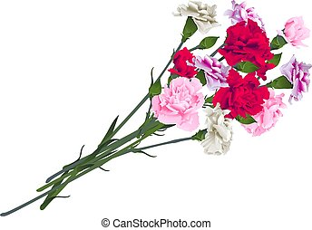 Red, white and pink carnation flowers bouquet isolated on white background