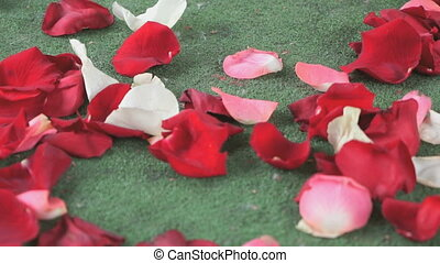 Red, white rose petals scattered on green carpet