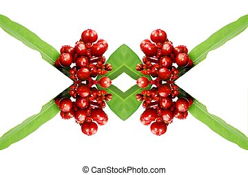 red wild fruit isolated on white