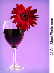 red wine and gerbera