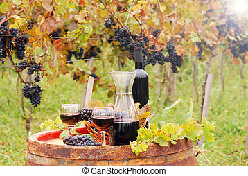 Red wine and grape in vineyard