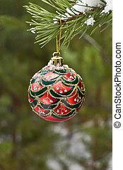 Christmas ball on a branch of pine