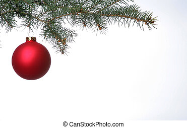 Lone red christmas ball hangs from pine bough