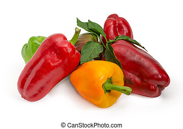 Red, yellow and green bell peppers and twig with leaves