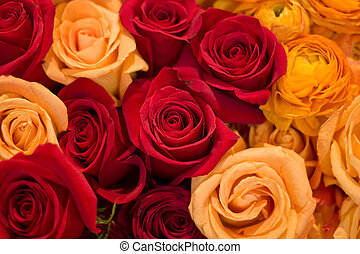 Red, Yellow and Orange Roses - Arrangement of different...