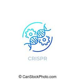 redaktion, crispr, linie, vektor, genom, ikone