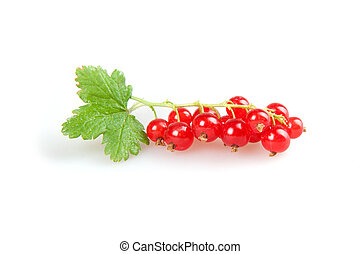 redcurrant isolated on white