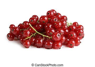 Redcurrant - fresh redcurrant berry fruit close up shoot