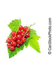 Redcurrants with Green Leaves Isolated on White Background