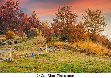 reddish sunrise in autumn countryside. lovely rural scenery...