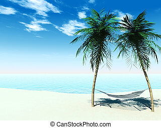 rede, entre, palmtrees
