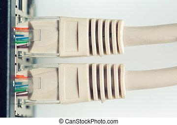 rede, interruptor, e, utp, ethernet, cabos