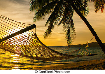 rede, silueta, com, coqueiros, ligado, um, praia, em, pôr do sol