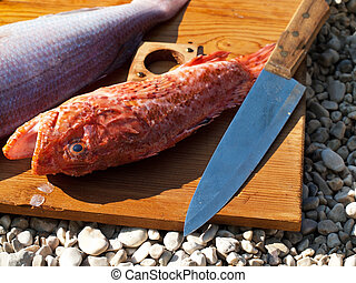 Redfish on board