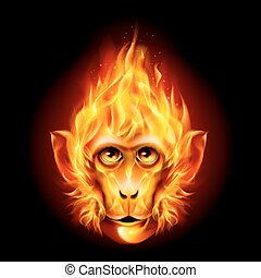 Redhead Fire Monkey isolated on black background