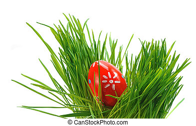 easter egg in green grass