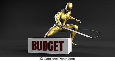 Reduce Budget