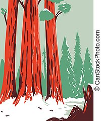 WPA poster art of Redwood National and State Park during winter with coastal redwoods located northern California, United States done in works project administration or federal art project style.