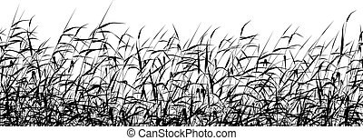 Reed foreground - Detailed editable vector silhouette of a ...