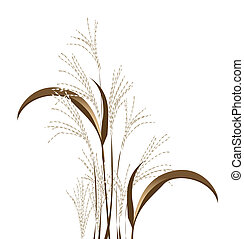 reed - a group of reed on a white background