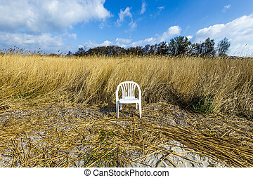 reeds of grass with blue sky and plastic chair