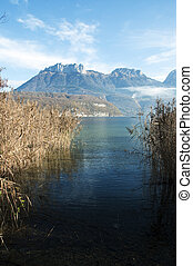 Reeds on Annecy lake and mountains - Passing through the...