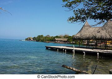 reef., 珊瑚, islands., コロンビア, カリブ海, ロサリオ