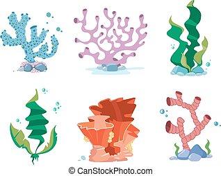 Reef corals, seaweeds, underwater wildlife plants vector set