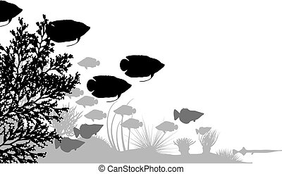 Reef - Vector illustration of fish and coral silhouettes