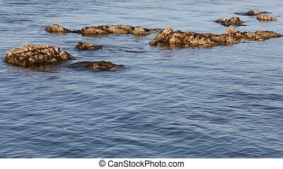 reefs and rocks in seawater - reefs and rocks in sea water....