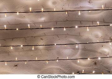 reeks, elfje, bloembollen, lichten