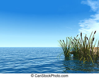reet - water landscape and reed - 3d illustration