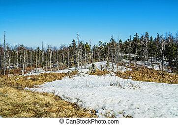 """refúgio esqui, """"gora, belaya"""", em, tarde, spring."""