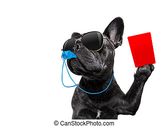 Referee dog with whistle - referee arbitrator umpire french...