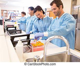 referral, przygotowując, próbki