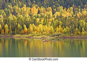 Reflecting Autumn Colors