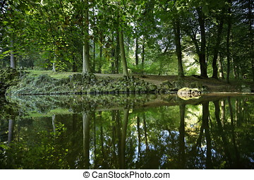 Reflection in a forest lake