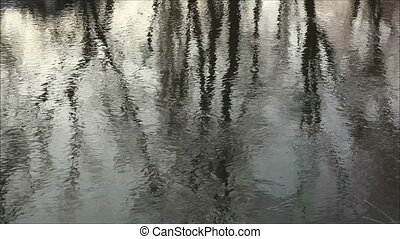 reflection in the water 1