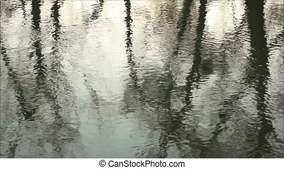 reflection in the water 2