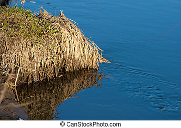Reflection of a blue sky in a creek with thawed water in the spring April forest at sunset.