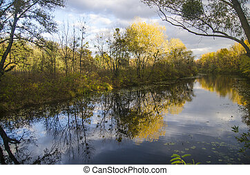 Reflection of autumn forest in a lake