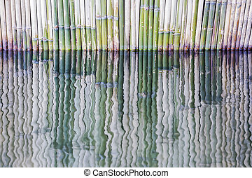 Reflection of bamboo fence