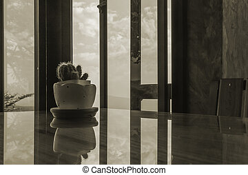 Reflection of Cactus in white cup, design interior with Landscape sky and clouds background on vintage style