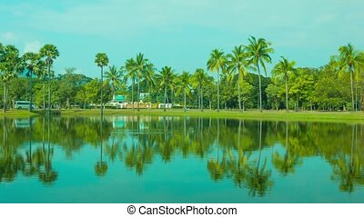 Reflection of coconut palm trees in decorative pond