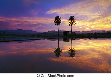 Reflection of dramatic sunset color