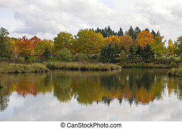 Reflection of Fall Trees by the Pond
