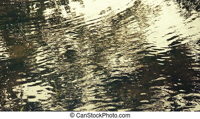 Reflection Of The Golden Sunset Shine On Water Ripple